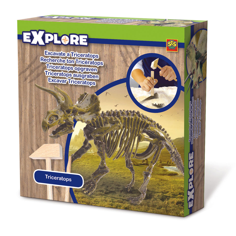 SES Explore skelet Triceratops opgraven