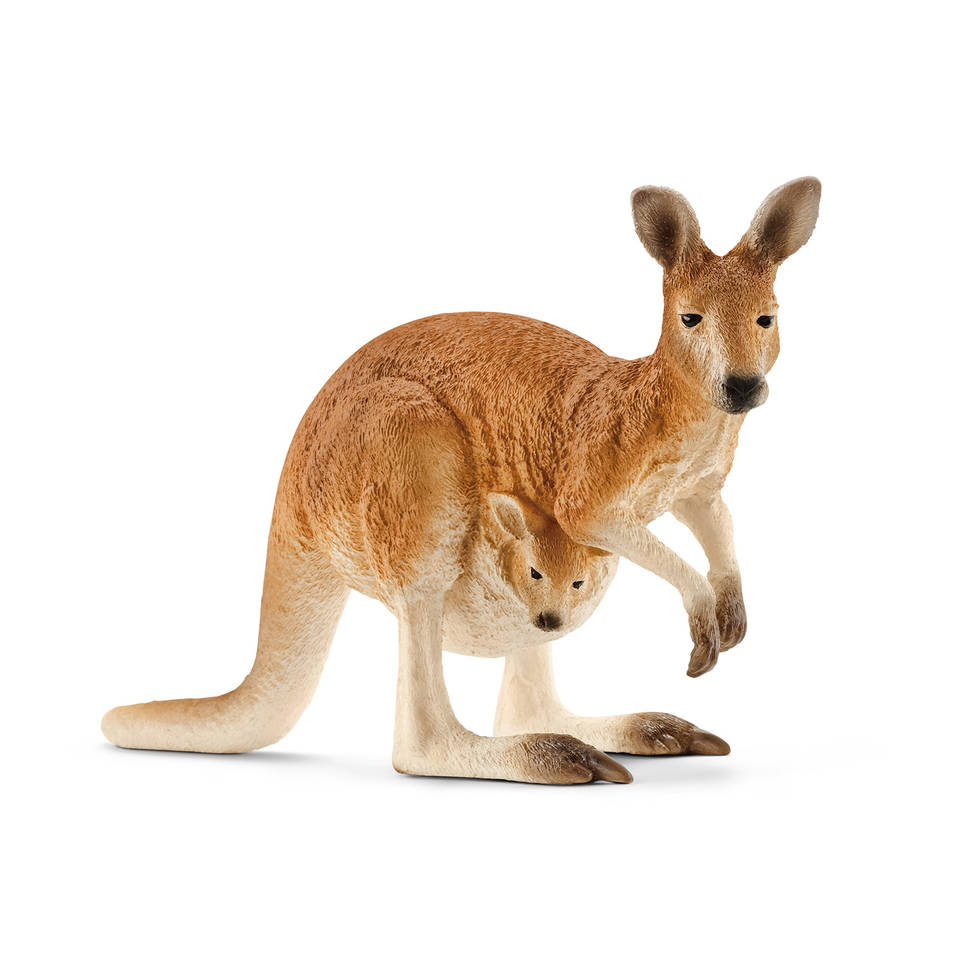 Schleich figuur kangoeroe 14756