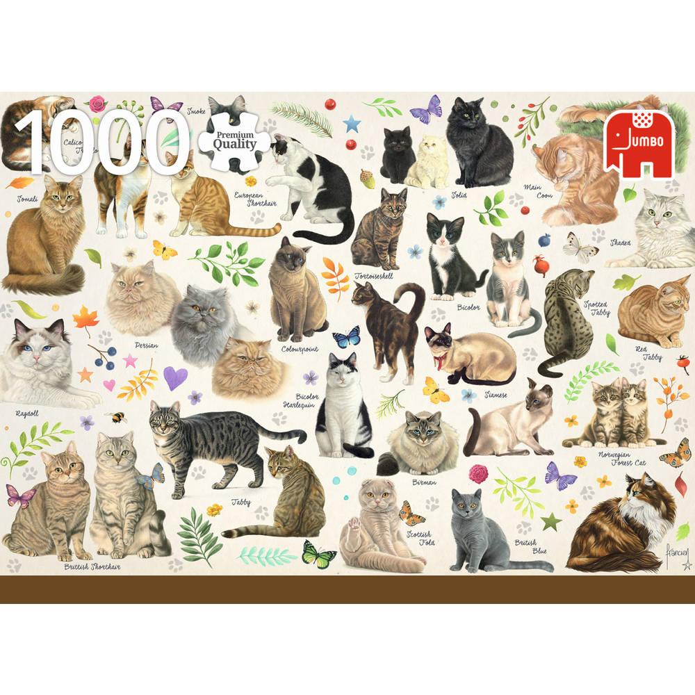 Jumbo puzzel katten poster - 1000 stukjes