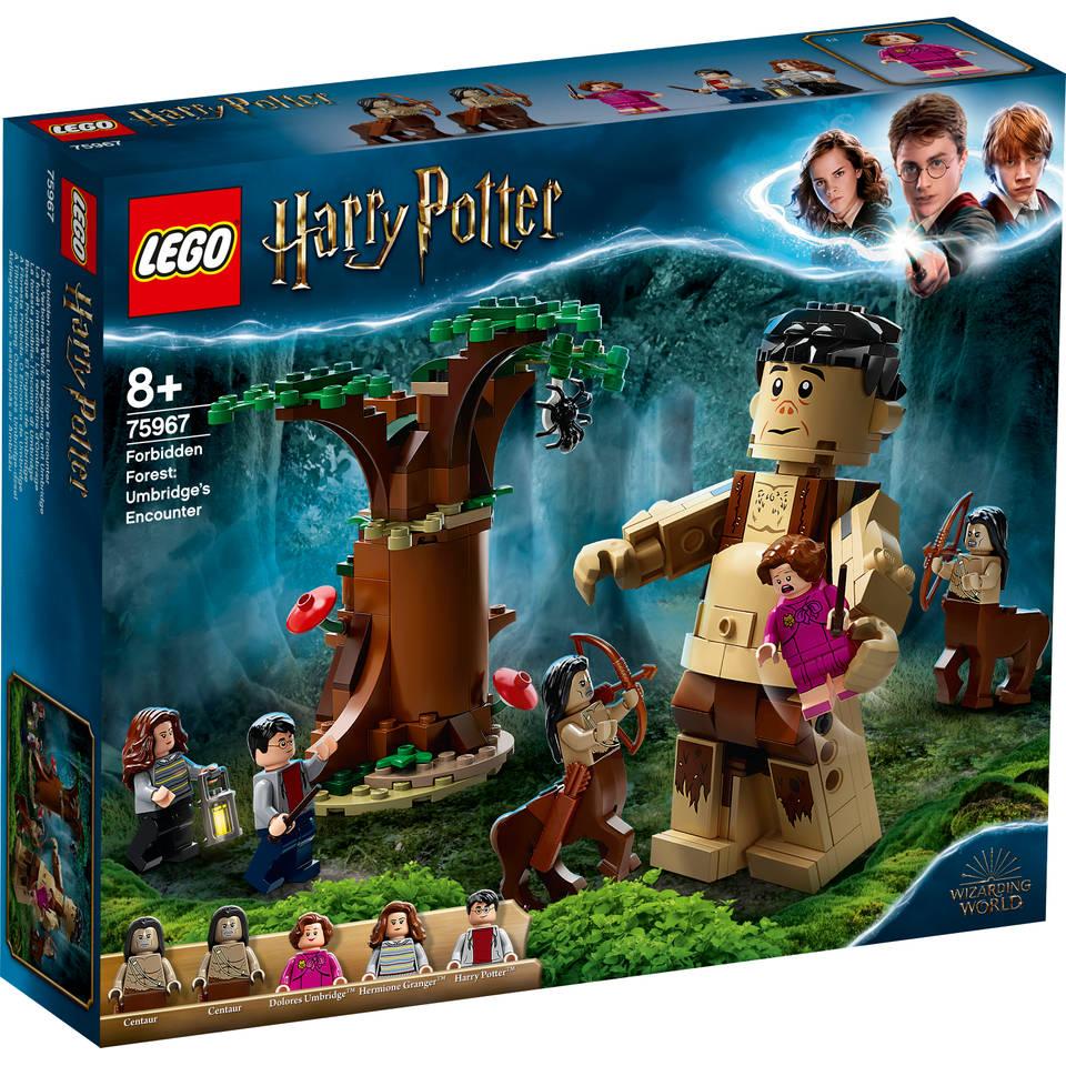 LEGO Harry Potter Het Verboden Bos: Ombers ontmoeting met Groemp 75967