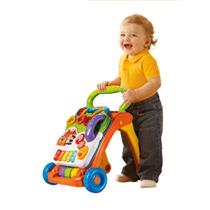 - Vtech Baby Walker -