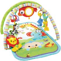 - Fisher-Price 3-in-1 muzikale activiteiten gym speelset