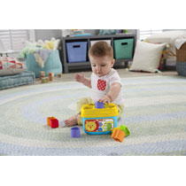 FISHER-PRICE - BABY'S EERSTE BLOKKEN