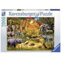 Ravensburger puzzel bijeenkomst bij de waterplaats - 2000 stukjes