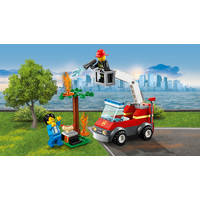 LEGO 60212 BARBECUEBRAND BLUSSEN