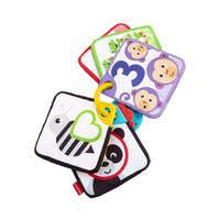 Fisher-Price 1-tot-5 leerkaarten