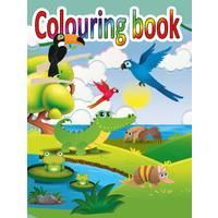 COLOURING BOOK 14 X 19