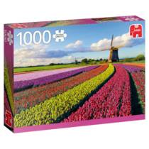 PC FIELD OF TULIPS (1000)