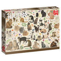 PC CATS POSTER (1000)
