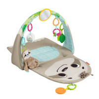Fisher-Price Ready to Hang sensorische luiaard activity center