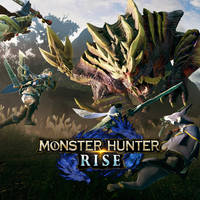 NSW MONSTER HUNTER RISE