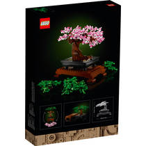LEGO 10281 TBD-LIFESTYLE-2-2021