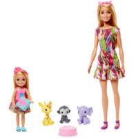 Barbie en Chelsea de verdwaald verjaardag