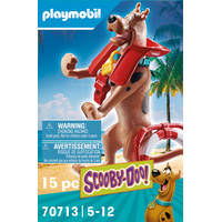 PLAYMOBIL 70713 SD VERZ. FIG. BADMEESTER