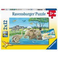 Ravensburger puzzelset Jonge dieren uit de hele wereld - 2 x 12 stukjes