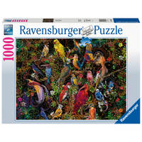 Ravensburger puzzel Schitterende vogels - 1000 stukjes