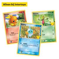 Pokémon TCG Limited Edition Giant Promo Cards Hoenn - augustus