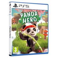 PS5 Panda Hero